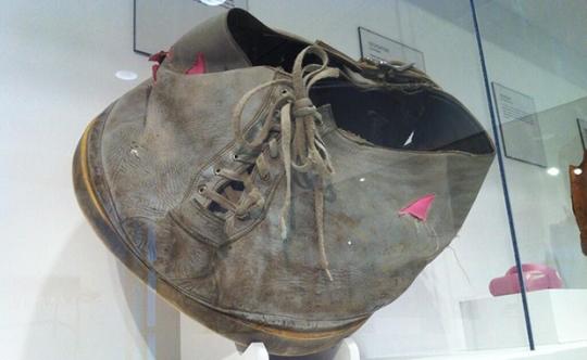 Elephant-Shoe